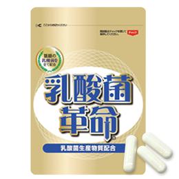 乳酸菌革命